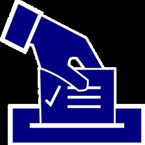 ブカレスト、地方選挙の結果 ガブリエラフィレア (Gabriela Firea)市長について
